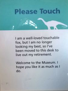 Lovable Retired Fox